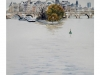 2013-11paseo-fluvial-medium